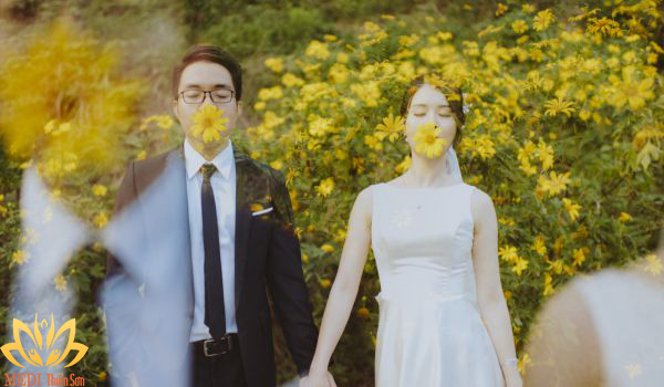 Chụp ảnh cưới Ba Vì mùa hoa dã quỳ