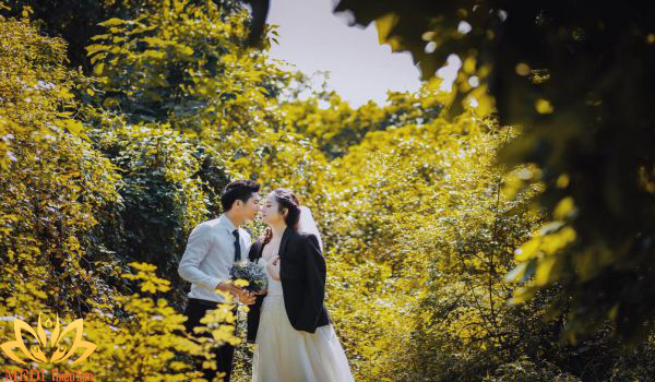 Chụp ảnh cưới Hà Nội ở vườn nhãn